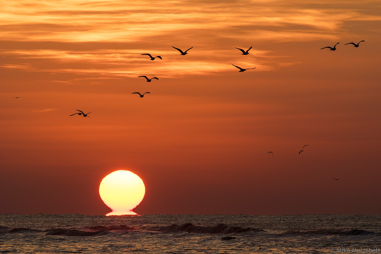 #wassenaar #sunset #sundowner #gulls #sea